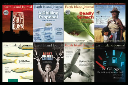 collage of Earth Island Journal covers